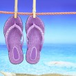 Flip-Flop with seascape on the background — Stock Photo #12644810