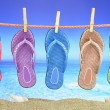 Colorful Flip-Flop with seascape on the background — Stock Photo