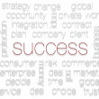 SUCCESS. Word collage on white background — Stock Photo