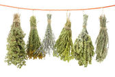 Variety of dried herbs hanging on a rope — Stock Photo
