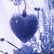 Christmas love. Heart ornament hanging on a branch — Stock Photo #16404363