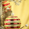 Christmas ball on a branch — Stock Photo