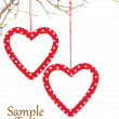 Heart ornaments hanging on a branch — Stock Photo #17865385