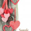 Heart ornaments hanging on a tree — Stock Photo #17865415