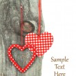 Heart ornaments hanging on a tree — Stock Photo #17865589