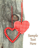 Heart ornaments hanging on a tree — Stock Photo