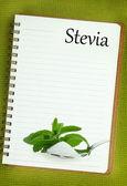Fresh Stevia Rebaudiana and sugar on blank notebook page — Stock Photo