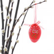 Easter eggs hanging on a pussy willow branch — Stock Photo