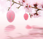 Easter eggs hanging on the almond tree reflected in water — Stock Photo