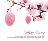 Easter eggs hanging on the almond branch — Stock Photo