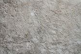 Background of cement wall texture — Stock Photo