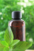 Bottle of Peppermint essential oil — Stock Photo