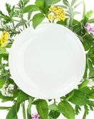 White plate with fresh herbs and spices around it — Stock Photo