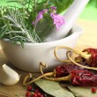 White porcelain mortar and pestle with fresh herbs — Stock Photo