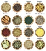 Collection of metal bowls full of herbs and spices — Stock Photo