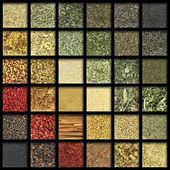 Collection of herbs and spices with gradient colors — Stock Photo