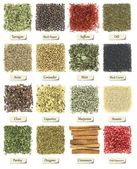 Collection of herbs and spices isolated on white — Stock Photo