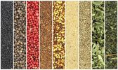 Banners of herbs and spices — Stock Photo