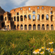 The Colosseum in Rome, Italy — Stock Photo #28807021