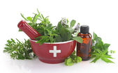 Mortar with medicine cross, fresh herbs and essential oil bottle — Stock Photo