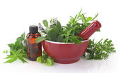Mortar and pestle with fresh herbs and essential oil bottle — Stock Photo