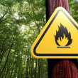 Stock Photo: Fire danger sign on the tree