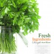 Stock Photo: Bouquet of parsley in glass vase with water, isolated on white