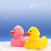 Anatre di gomma gialla e rosa in bagno schiuma — Foto Stock