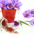 Dried saffron spice and Saffron flowers — Stock Photo