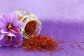Dried saffron spice and Saffron flower — Stock Photo