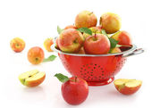 Apples in colander, isolated on white — Stock Photo