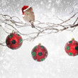 Stock Photo: Christmas balls and sparrow bird with SantClaus hat on snowy branch