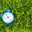 Blue alarm clock on green grass, conceptual. — Stock Photo