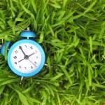 Blue alarm clock on green grass, conceptual. — Stock Photo
