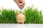 Hand deposit money in piggy bank with grass background — Stock Photo