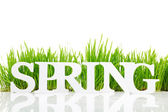 """Word """"Spring"""" with fresh grass isolated on white — Stockfoto"""