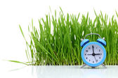 Blue alarm clock with fresh green grass isolated — Stockfoto