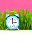 Clock with grass and pink background, puberty concept — Stock Photo