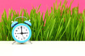 """Biological"" clock concept, with grass and pink background — Foto de Stock"