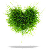 Green heart made of grass isolated on white background — Stock Photo