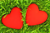 Two red hearts on green grass background — Stock Photo