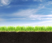 Cross-section of land with soil,grass and blue sky. — Stock Photo