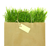 Recycled grocery bag with full of fresh green grass — Stock Photo