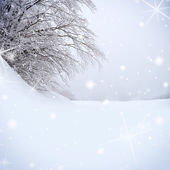 Snow covered tree with sparkle background — Stock Photo