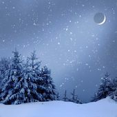 Beautiful winter landscape with snow covered trees at night — Stock Photo