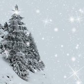 Snow covered tree on a slop — Stock Photo