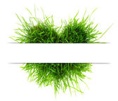 Eco concept with heart made of grass and copy-space — Stock Photo