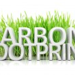 Stock Photo: Green grass with Carbon footprint 3D text isolated