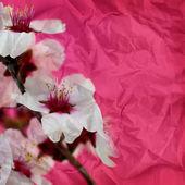 Vintage crumpled paper texture, grunge flower background  — Stock Photo