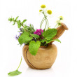 Mortar and pestle with fresh herbs — Stock Photo #44008405